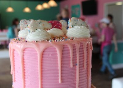 Animal Cookie Cake | 3 Sweet Girls Cakery