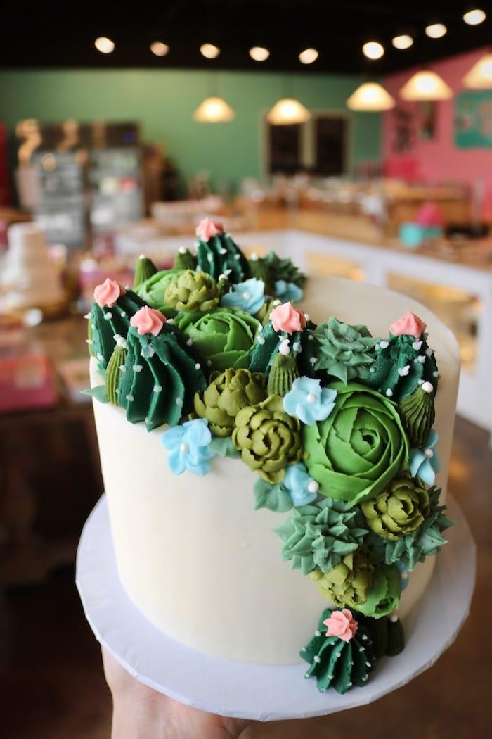 Cascading Succulant Cake | 3 Sweet Girls Cakery