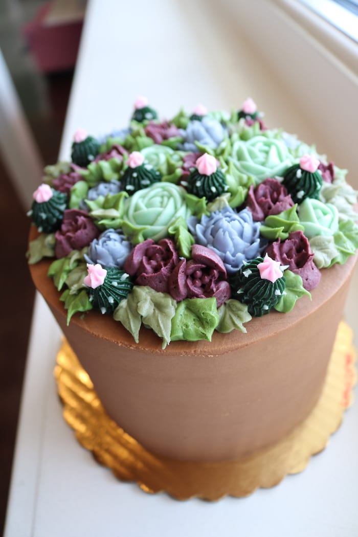 Chocolate Succulent Cake | 3 Sweet Girls Cakery