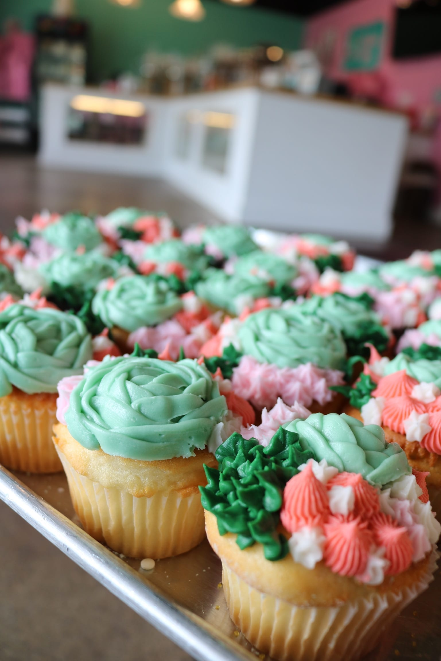 Coral and Green Succulant Cupcakes | 3 Sweet Girls Cakery