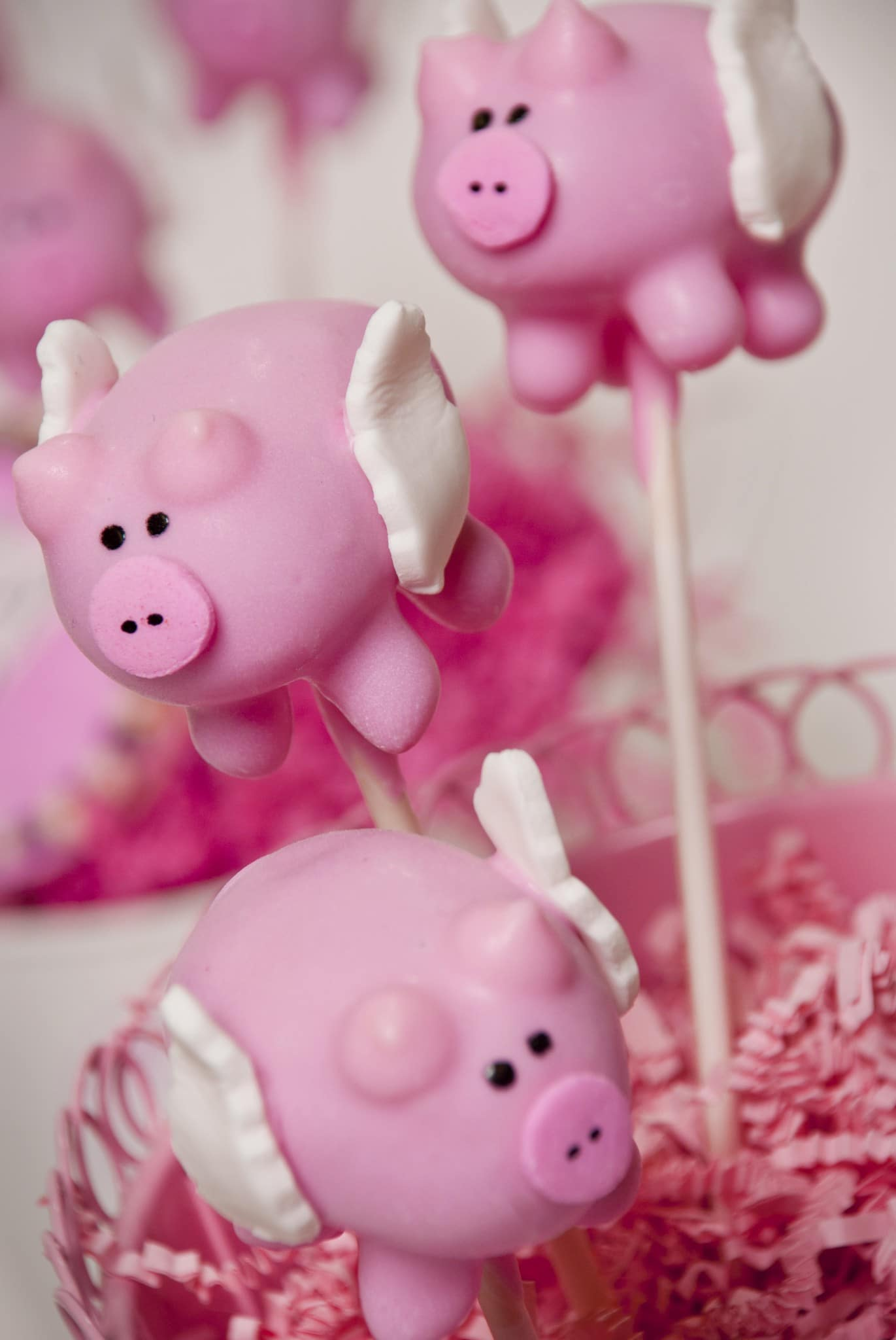 Flying Pig Cake Pop