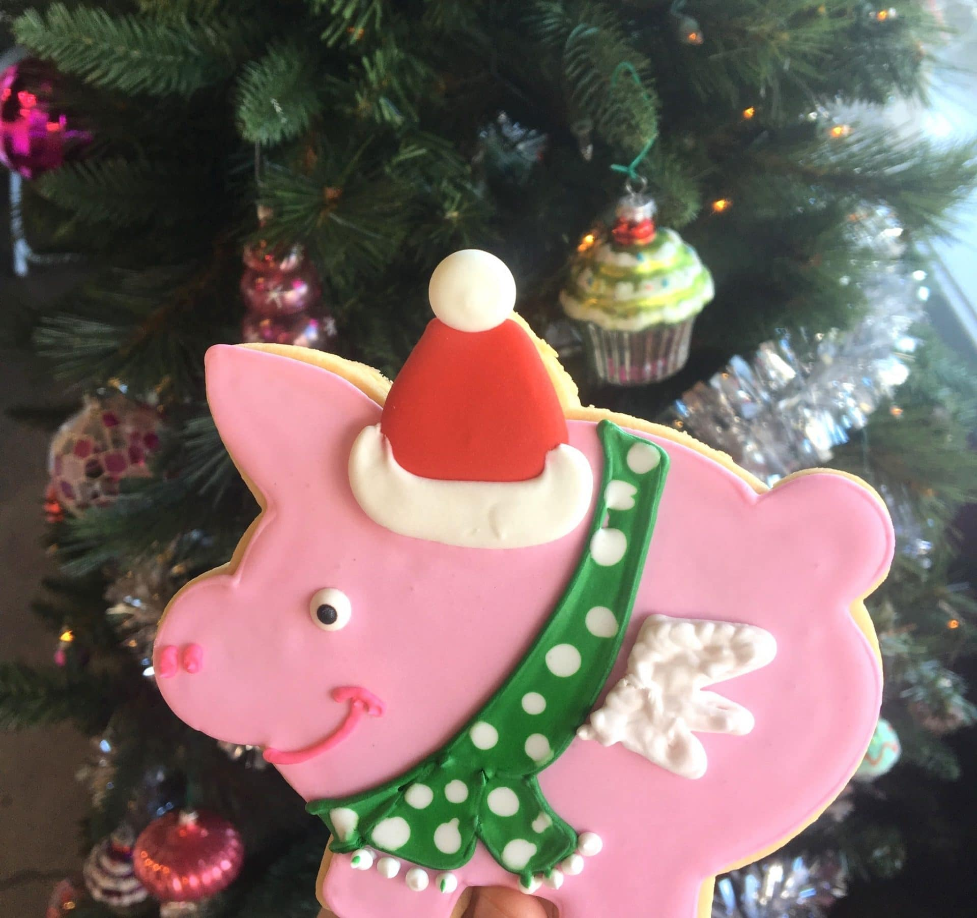 Flying Pig Cookie with Santa | 3 Sweet Girls Cakery
