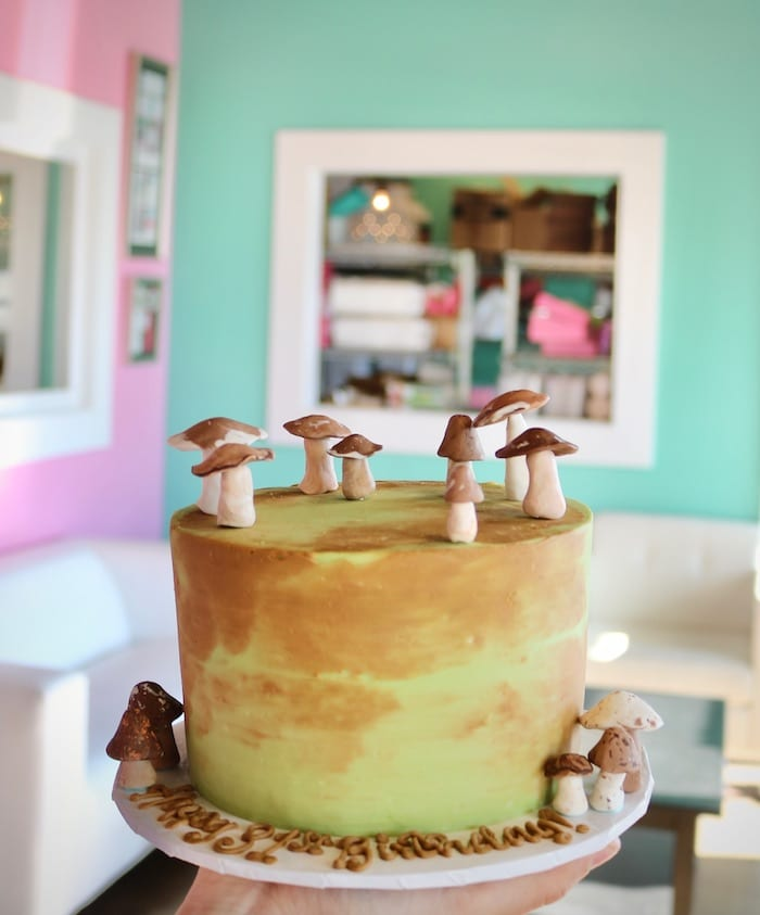 Mushroom Cake | 3 Sweet Girls Cakery