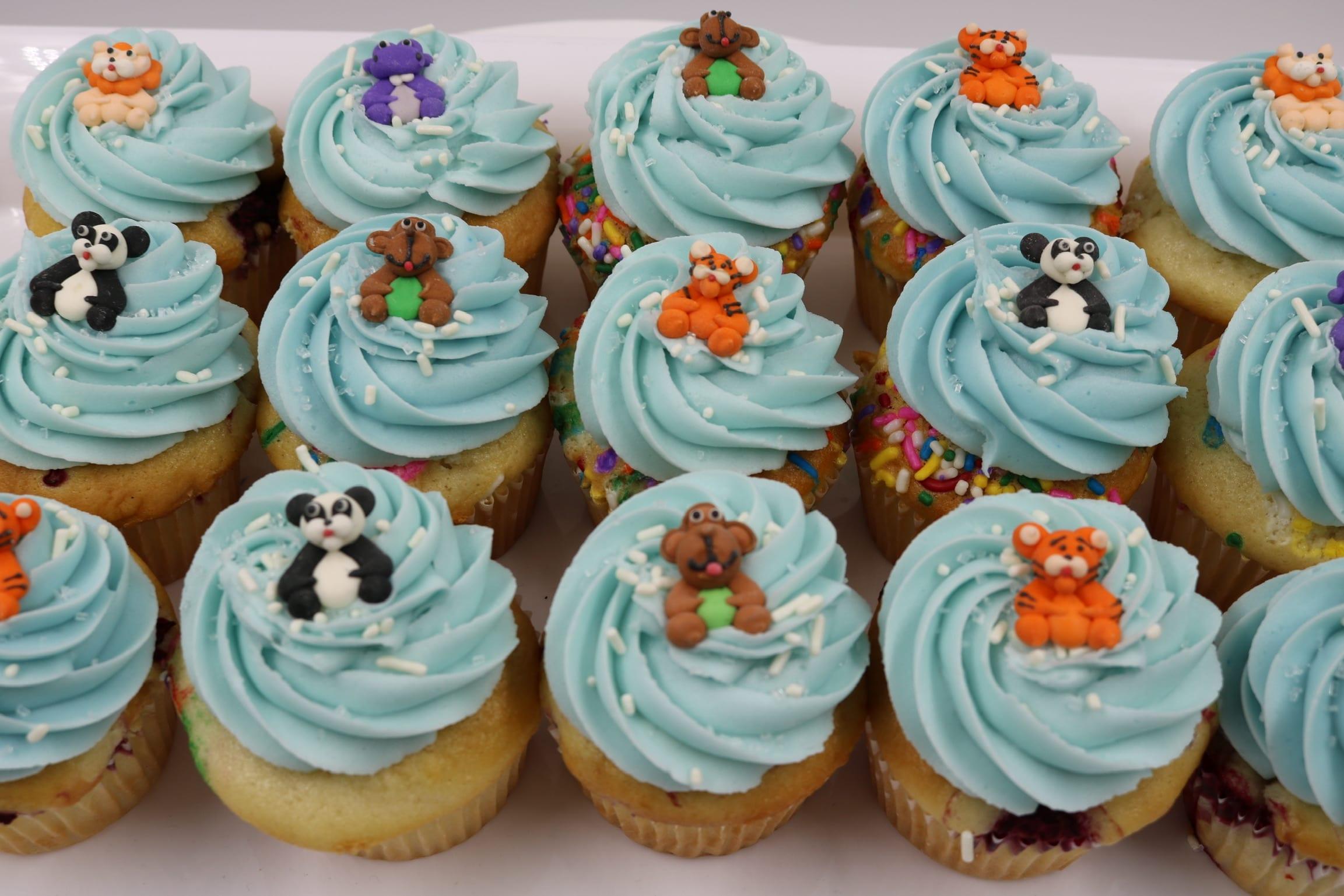 Safari Zoo Animal Cupcakes | 3 Sweet Girls Cakery