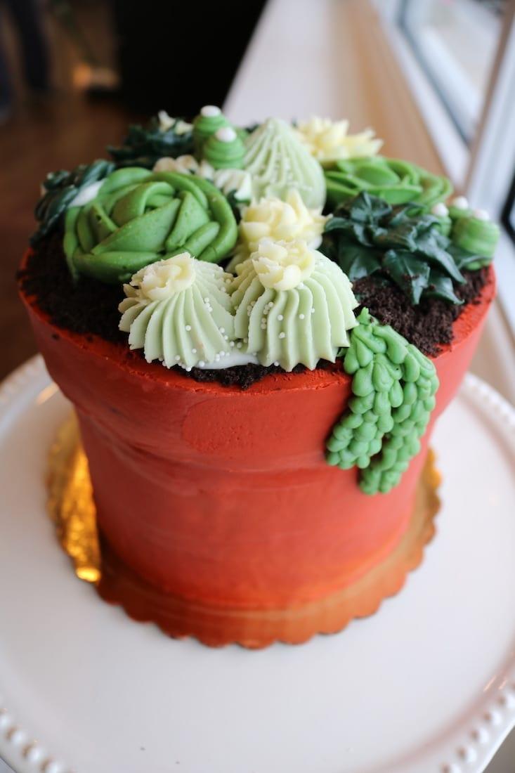 Succulant FlowerPot Cake | 3 Sweet Girls Cakery