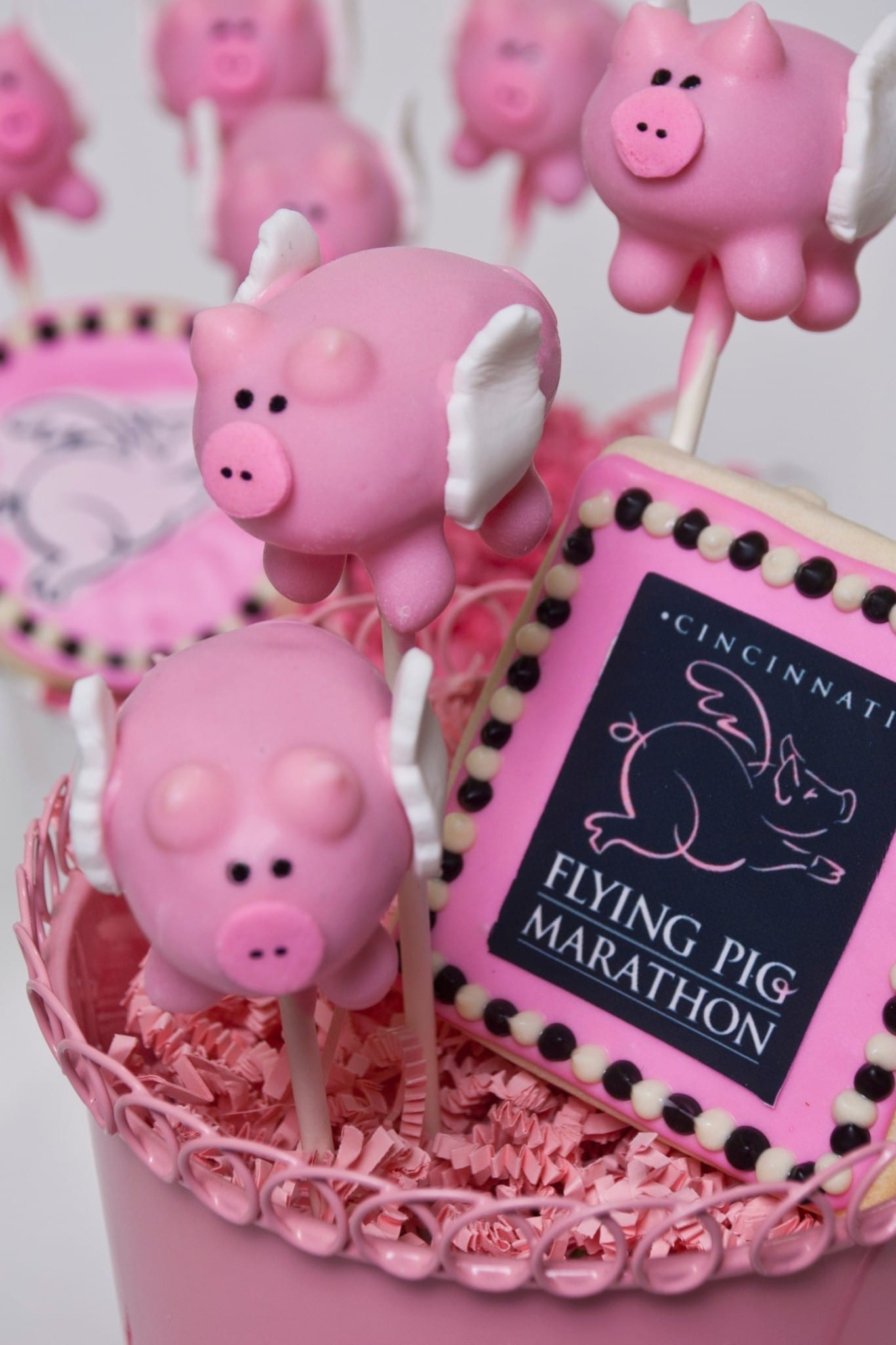 Flying Pig Marathon Cake Pops Cookies